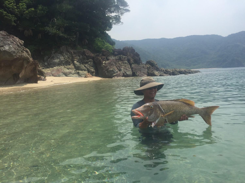 怪魚釣りました