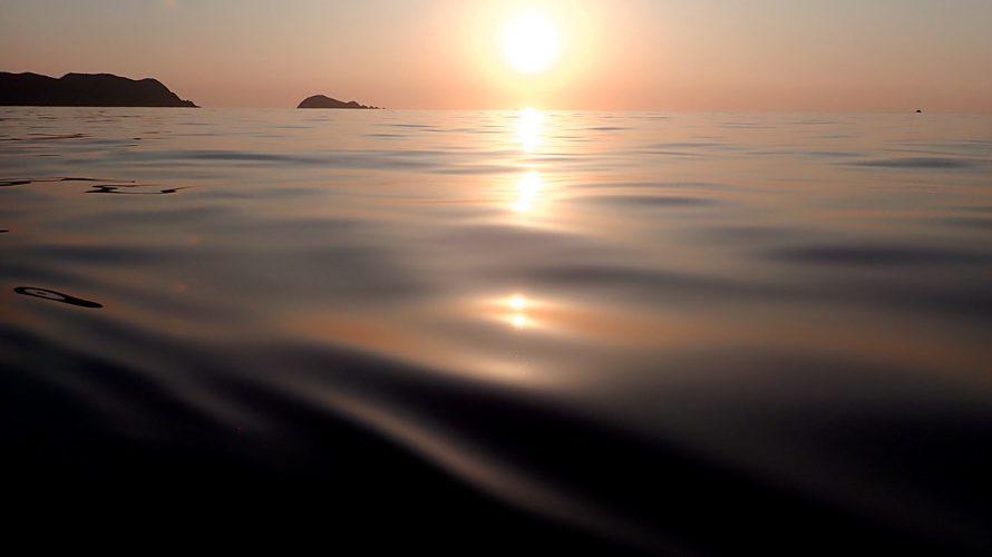 加計呂麻島的ひきこもり自給生活に適応すべし